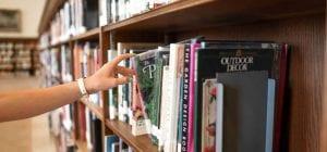 סטודנטית מחפשת מידע לכתיבת סמינריון בפסיכולוגיה